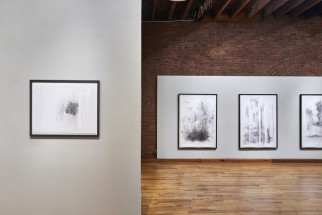 "Installation view of ""Atmospheres and Entropy: Works on paper"" at Cecilia de Torres, Ltd., New York - Catalina Chervin, Cecilia De Torres Ltd."