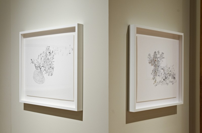 Installation view of Ricardo Lanzarini's drawings, Cecilia De Torres Ltd.