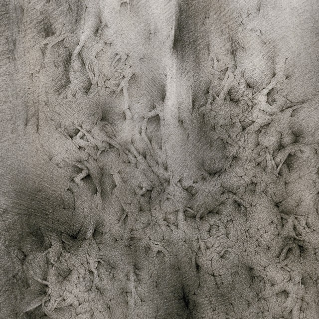Untitled (detail) - Catalina Chervin, Cecilia De Torres Ltd.