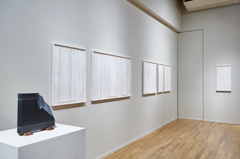 Installation view at Cecilia de Torres Ltd. New York, 2015 - Gustavo Bonevardi, Cecilia De Torres Ltd.