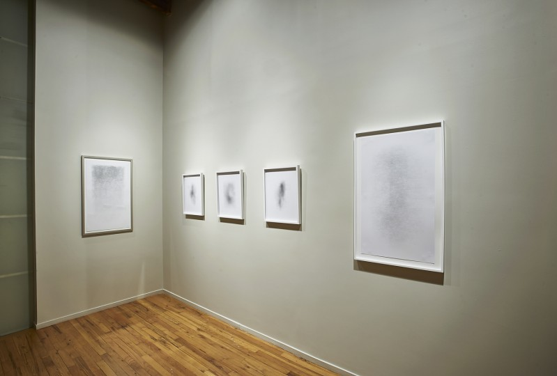 View of Gustavo Diaz's drawings, Cecilia De Torres Ltd.
